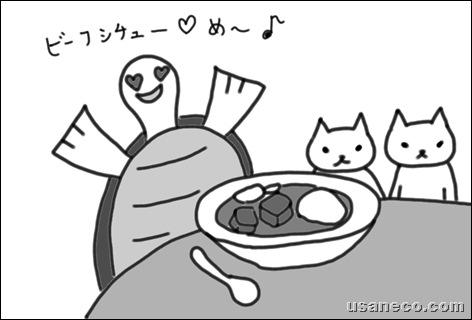 usaneko.com_コスモ 直火焼 ビーフシチュー・ルー20100129_1