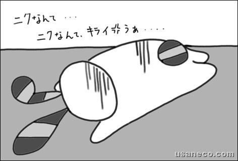usaneko.com_コスモ 直火焼 ビーフシチュー・ルー20100129_3