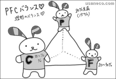 うさねこ.com_PFCバランス20100131_1