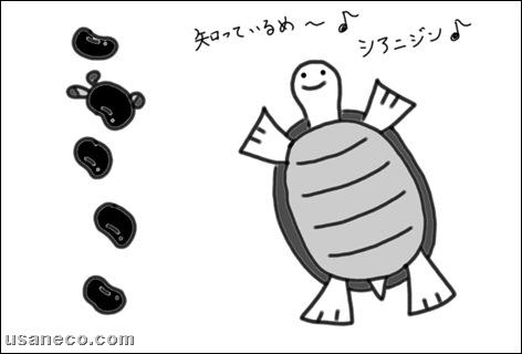 うさねこ.com_黒豆アントシアニン20100202_3