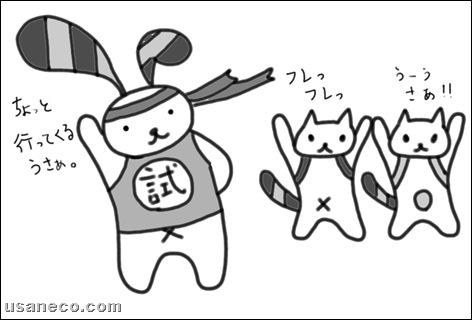 うさねこ.com_合格率85%20100211_1