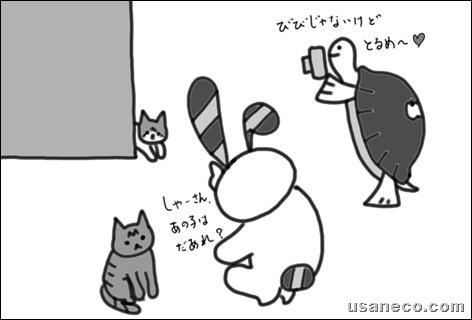 うさねこ.com_しゃーびび20100223_2