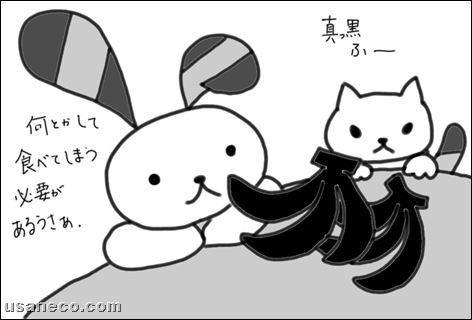 うさねこ.com_20100628_1