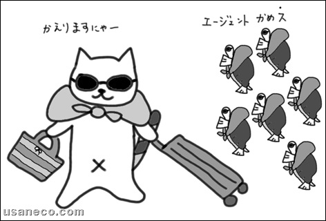 うさねこ.com_20100630_1