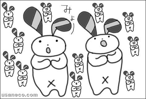 うさねこ.com_20100729_2