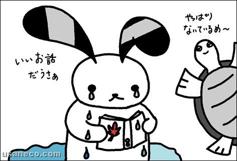 うさねこ.com_20100930_01