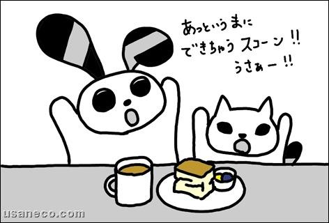 うさねこ.com_20101031_01