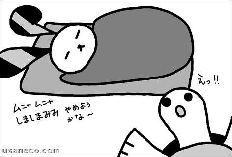 うさねこ.com_20110127_01