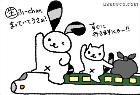 うさねこ.com_20110429_02