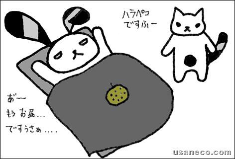 うさねこ.com_20110529_01
