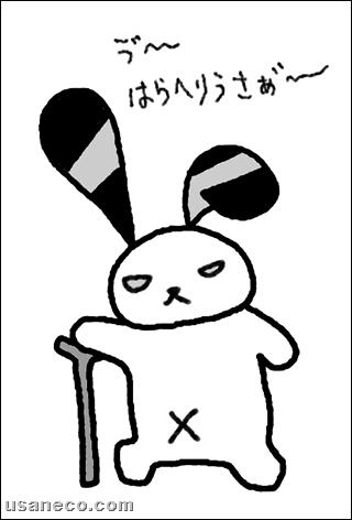 うさねこ.com_20110627_01