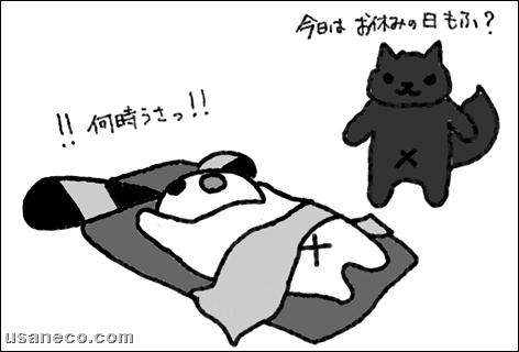 うさねこ.com_20110629_01