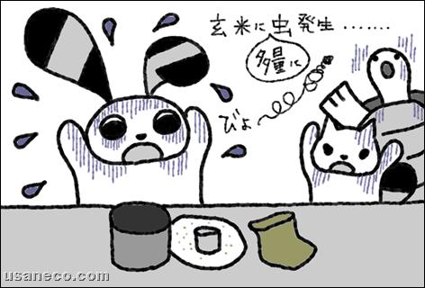 うさねこ.com_20110927_01