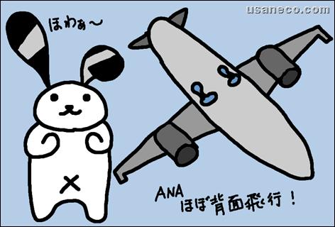 うさねこ.com_20110929_01