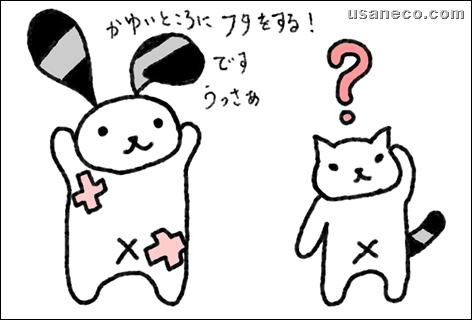 うさねこ.com_20111202_01