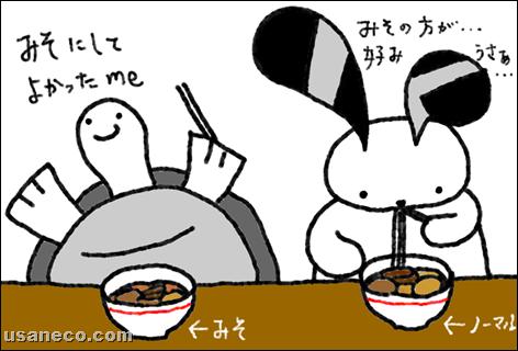 うさねこ.com_20111206_01