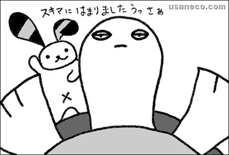 うさねこ.com_20111213_01