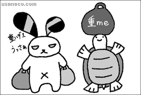 うさねこ.com_20111214_01