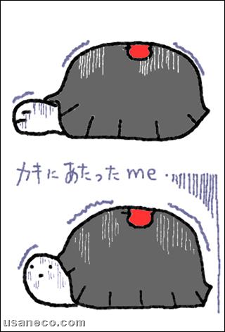 うさねこ.com_20111219_01