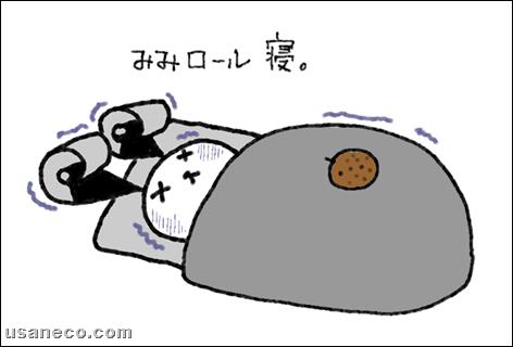 うさねこ.com_20111222_01