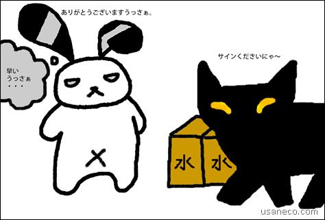 うさねこ.com_20120224_01