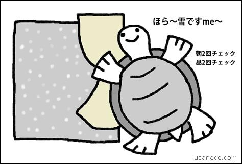 うさねこ.com_20120229_01