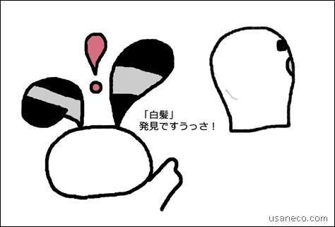 20130130_01
