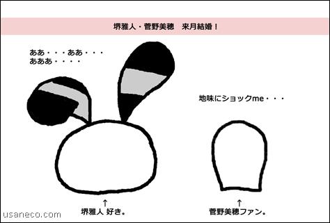 usaneco_20130322_1